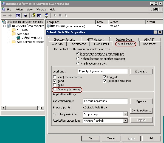 iis 403.14 a default document is not configured