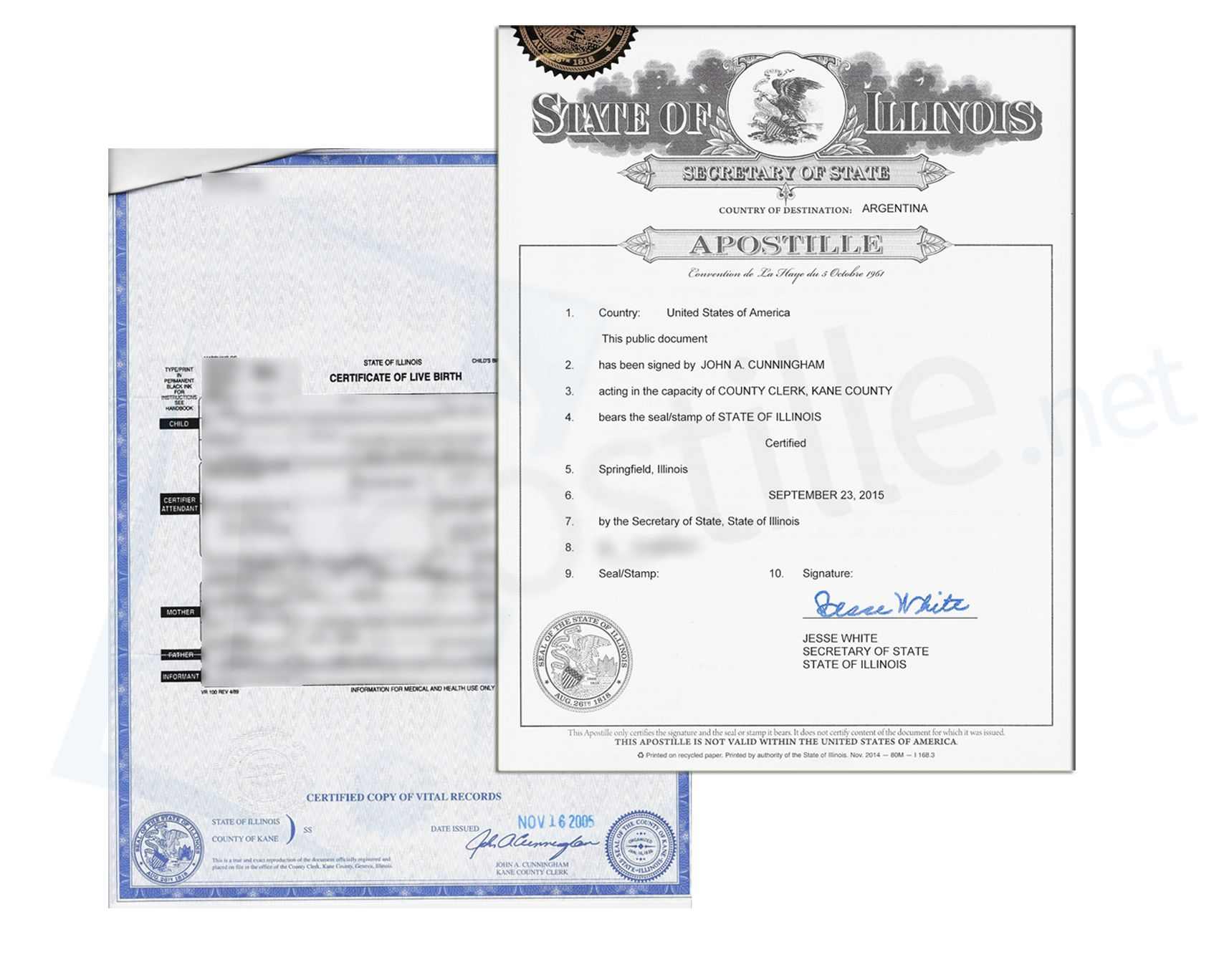 where can i apostille a document in illinois
