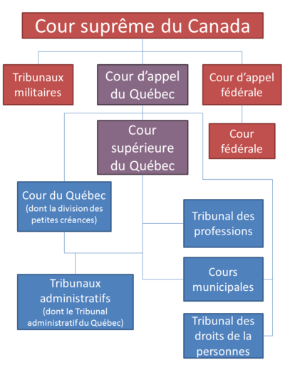 document notaire differences article et clause