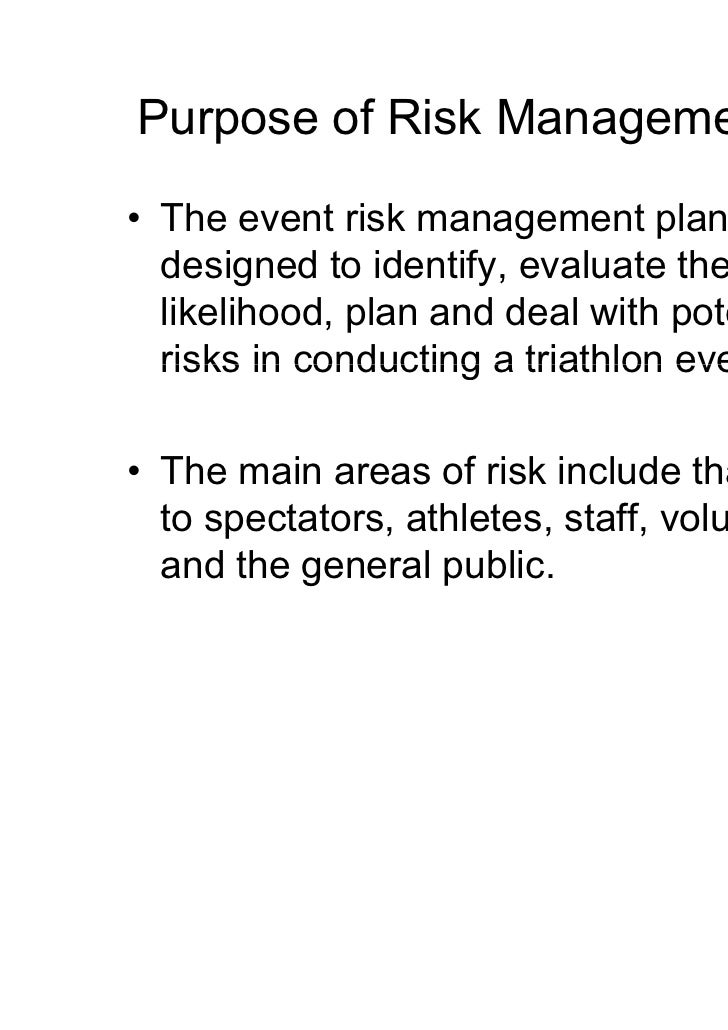 risk management strategy document example