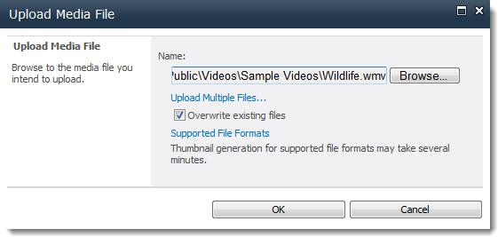adding audio to your document