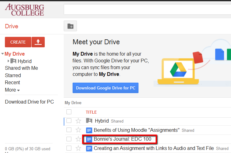 how can people access document from my google drive